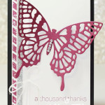 Stampin Up Butterfly Basics Bundle